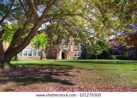 Shady tree with spring blossoms in front of a typical American school - stock photo