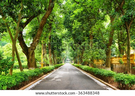 Shady walkway with tropical trees at botanical garden of the Presidential Palace of Vietnam in Hanoi. The Presidential Palace of Vietnam is a popular tourist destination of Asia. - stock photo