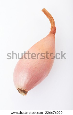 Shallot on white, clipping path included - stock photo