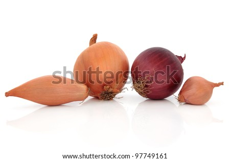 Shallot,  onion, red and onion vegetables whole and sliced isolated over white background.
