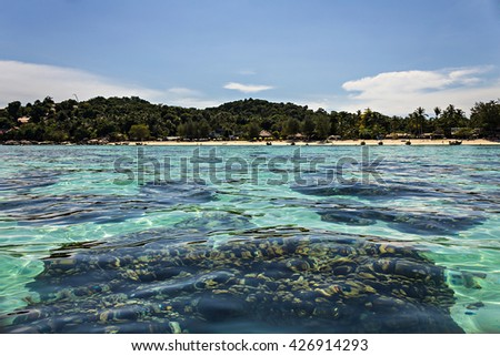 Shallow coral reef and clear sea of the Lipe island, Thailand