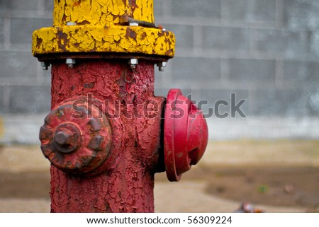 Shallow depth of field image of an old fire hydrant with cracking and peeling paint.