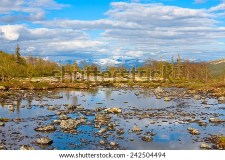 Shallow polygonal lake in front of northern taiga forest in Tuljok valley, Hibiny mountains above the Arctic Circle, Russia - stock photo