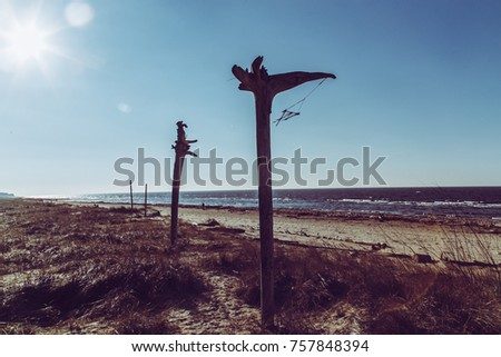 Shaman totems in the Baltic sea. Upward direction. Nature upward movement. Quota image with Elegant Fade and blur effect.  Vintage photo.