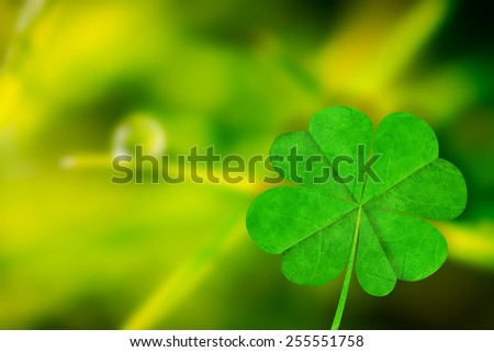 Shamrock against dew drop on blade of grass - stock photo