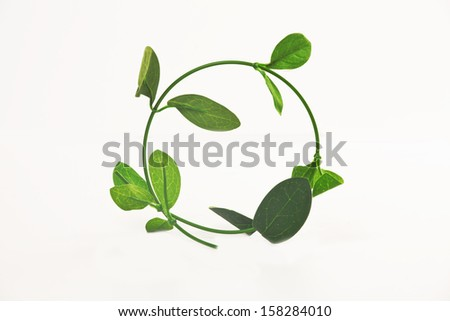 shape of circle twig with leaves on a white background - stock photo