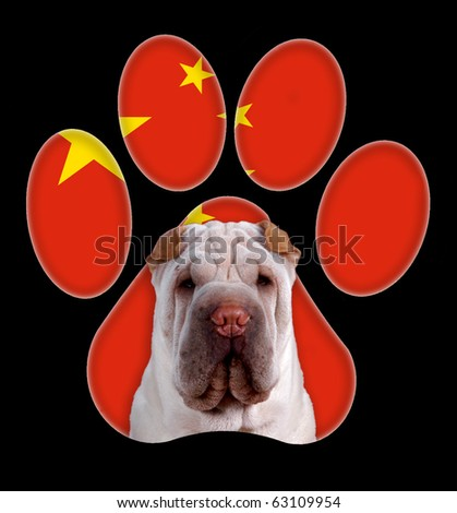Shar-pei, Dog portrait with a background of china flag in paw print - stock photo
