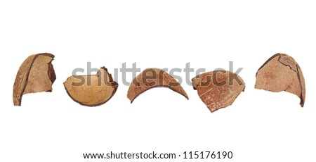 Shards of coconut shell, lined in a row on a white background