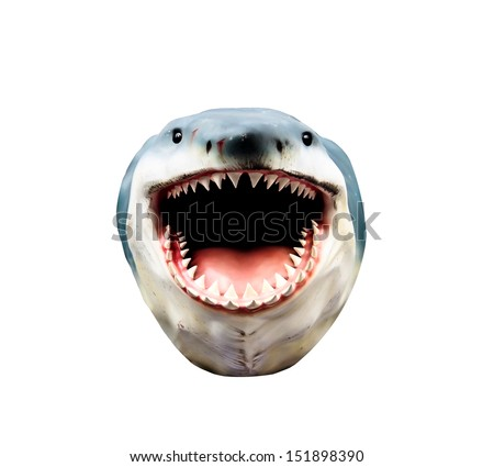 shark head model isolated on white background - stock photo