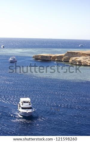 Shark Observatory in Ras Mohamed, Sharm el Sheikh. - stock photo