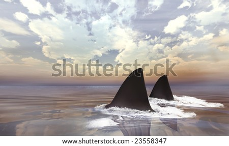 Shark swimming in dark calm water making waves early morning