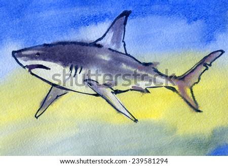 Shark. Watercolor. - stock photo