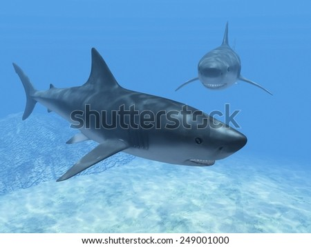 sharks  in the blue water - stock photo