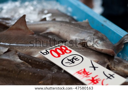 Sharks on sale at a market in Japan.
