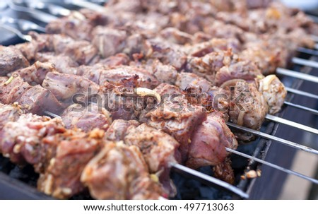 Shashlyk Meat on Metal Skewers Placed Together. Closeup Shot.Horizontal Image Orientation