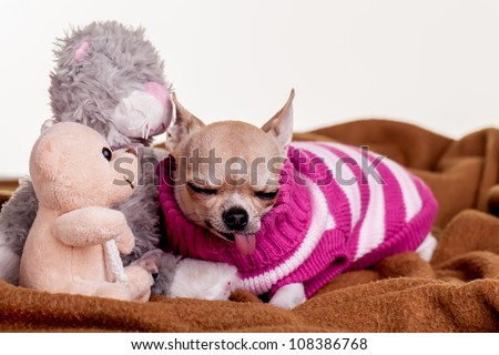She is sleeping next to all her dolls. - stock photo