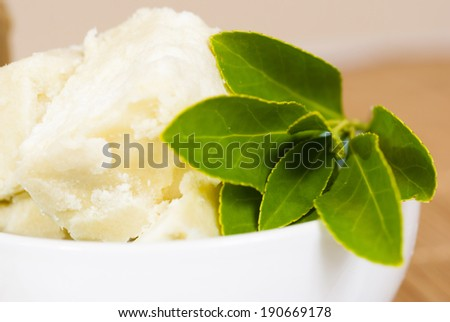 shea butter natural moisturizer with herbal plant - stock photo