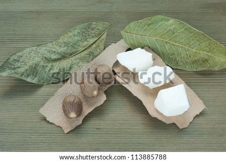 shea butter, shea butter nuts on wooden - stock photo