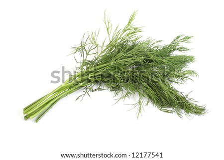 sheaf of green dill, isolated over white background