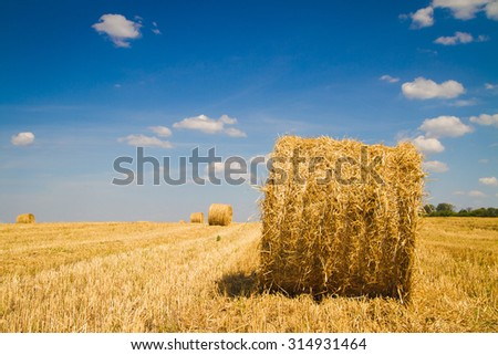 sheaf of hay in the field with blue sky and clouds