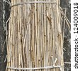 Sheaf of straw is propped against a wall - stock photo