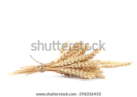 Sheaf of wheat ears isolated on white background. - stock photo