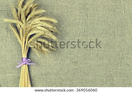 Sheaf of wheat ears on linen canvas background. Harvest concept - stock photo