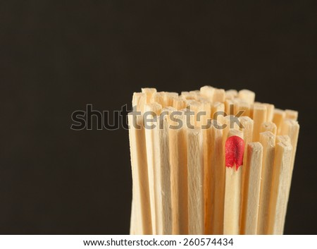 Sheaf of wooden sticks with a matchstick standing among them to symbolize individuality and standing out concept on dark artistic background - stock photo