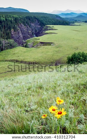 Sheep River Valley, Alberta - stock photo