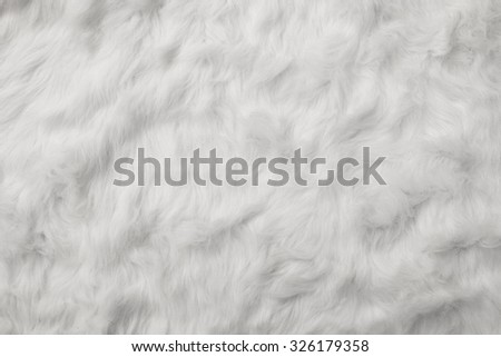 Sheep Wool as background  - stock photo
