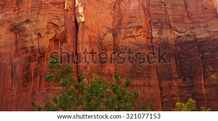 Sheer cliffs confine the Virgin River  on the forested Riverside Walk in Zion National Park, Utah