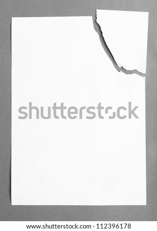 Sheet of white paper divided in two pieces, isolated on grey background, copyspace - stock photo