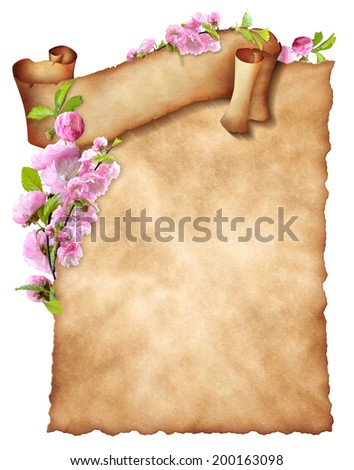 Sheet old paper with curly banner and floral decoration. - stock photo