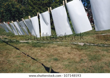 Sheets of paper drying in the sun.