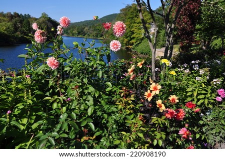 Shelbune Falls, Massachusetts:  Colourful perennials including masses of Dahlias line the Bridge of Flowers, a former trolley span over the Deerfield River - stock photo