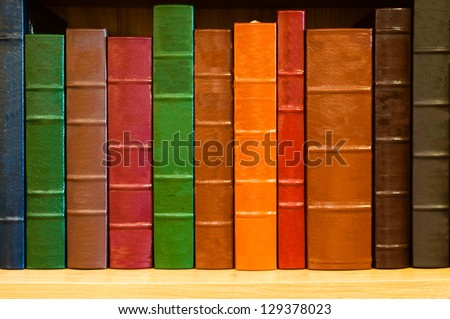 Shelf of books with colorful leather spines