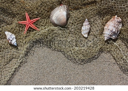 Shell and red starfish on fishing net on sand - stock photo