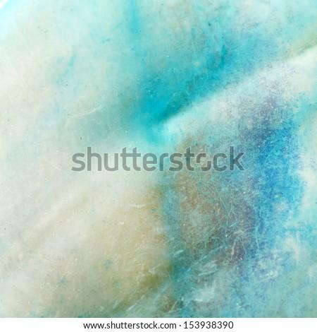 shell macro background - stock photo