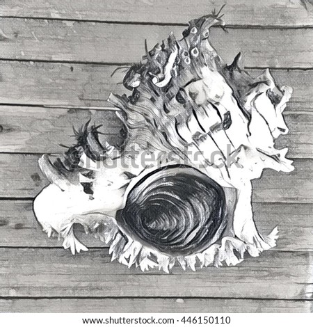 Shell on the wooden table digital illustration, black and white monochrome image. Sketch style sea mollusk with door and spiral cover. Drawing of snail. Ocean fauna of seaside. Water animal portrait - stock photo