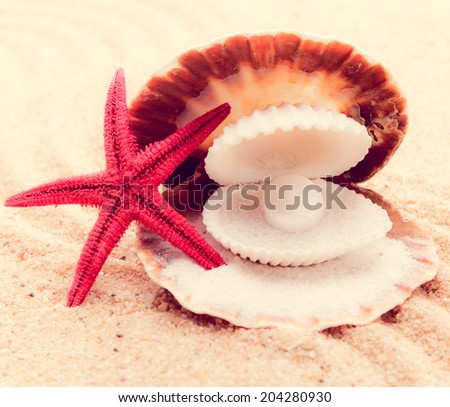 Shell with a pearl  with a  instagram filter - stock photo