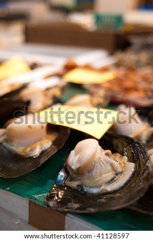 Shellfish at tsukiji fish market in Tokyo, Japan. - stock photo