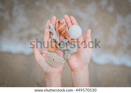 Shells and coral on woman's hands on background beach - stock photo