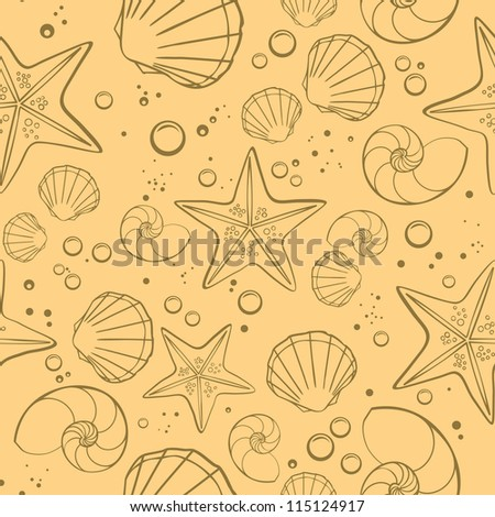 shells and starfish on sand