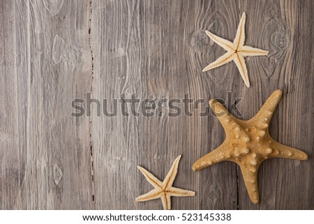shells and starfish on wooden background