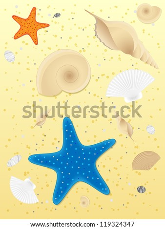 Shells and starfishes on sand background. Illustration.