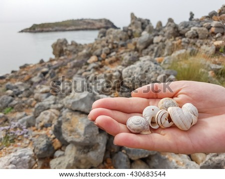 Shells in the hand of man