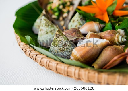 Shells in the palm leaf. Restaurant