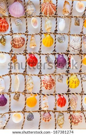 Shells on a net decoration. Greece. - stock photo