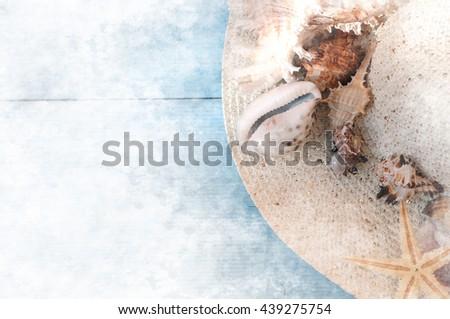 Shells on sandy beach - stock photo