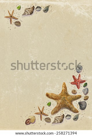 Shells. Watercolor. Background.